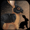 Icon avatar of a black Tan rabbit.