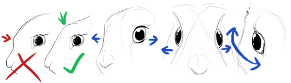 Drawings of improper humanized eyes versus proper bunny eyes.